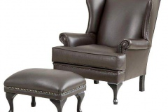 T-Cushion-Wingback